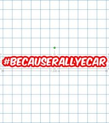 becauserallycar